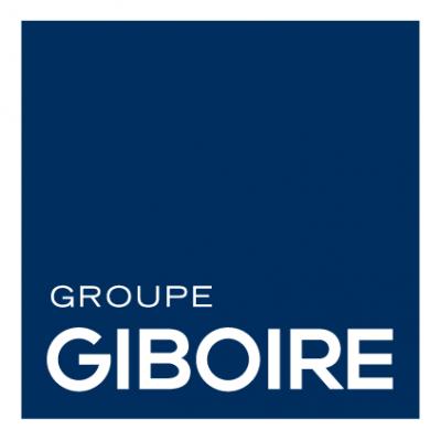 BD - version aplat - LOGO GIBOIRE GROUPE - RVB.png